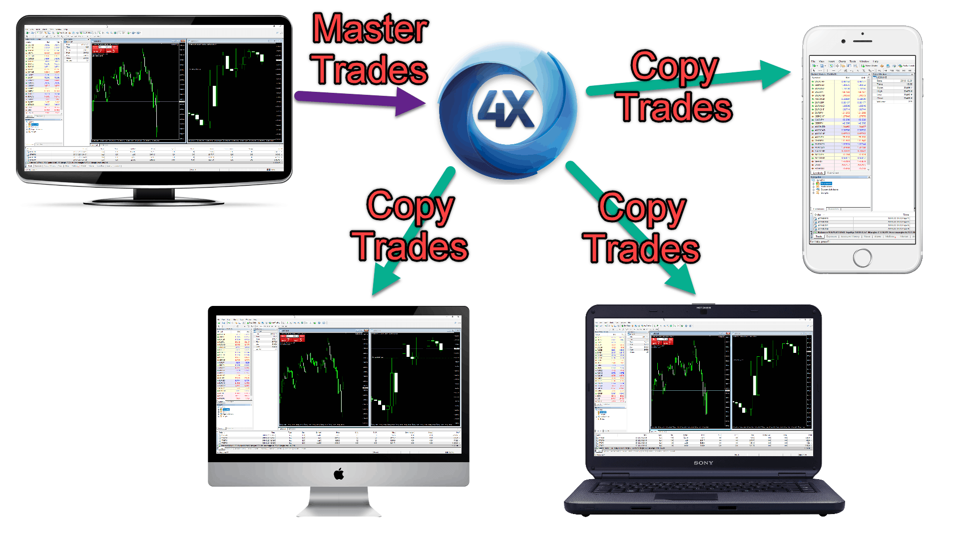 How to copy trade